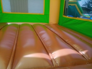 2Tropical Island bounce house combo