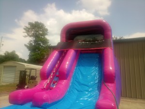4Pretty Princess Wet Dry slide