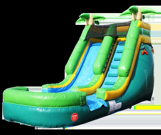 15Paradise Plunge Wet Dry slide
