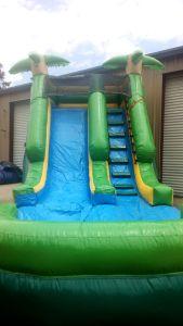20Paradise Plunge Wet Dry slide