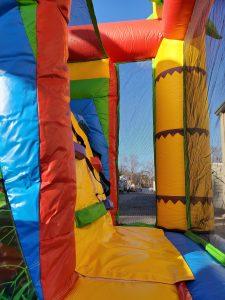 Animal Kingdom slide ladder
