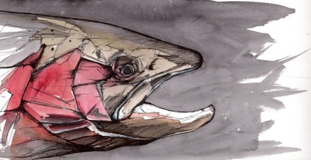 """Winter Chrome: Old Buck   2012   8"""" x 4""""   Pen and ink on paper"""