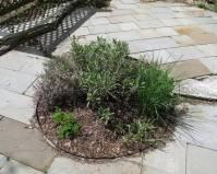 Herb Patio Garden Ideas Photograph | Patio Herb Garden