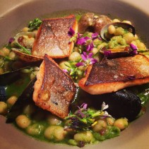 Seared trout with controne, beans, mussels, clams, fine herbs & lardo.