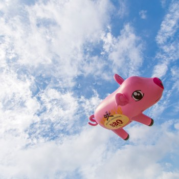 A photo of a flying pig
