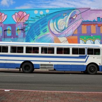A photo of the Kiltabar Transport shuttle bus in Shreveport