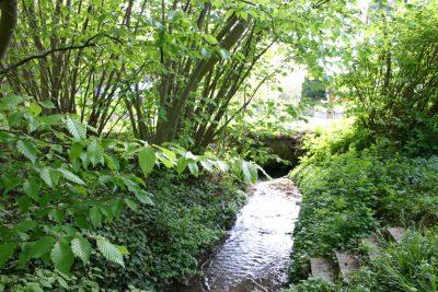 ruisseau-devant-la-maison