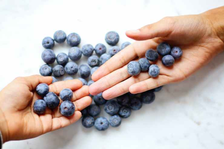 two person s hand with blueberries on top