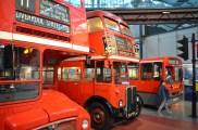 beautiful-buses
