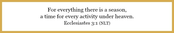 Ecclesiastes 3:1 on Learning to trust God's timing at 21flavorsofsplendor.com