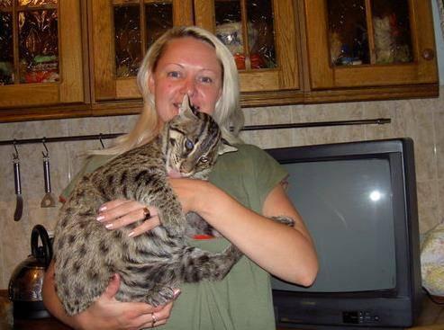 女子外出捡到一只奇怪的小奶猫,长大后好水抓鱼,好神奇