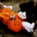 Ex-MI6 Chief: 'Torture Works'