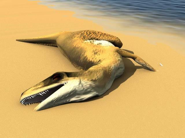 Nedávno rozbouřila vody vědeckého světa informace o nálezu fosilních pozůstatků dvou dravých dinasaurů dosud neznámého druhu, příbuzných masožravému druhu Tyrannosaurus Rex a to současně na dvou, několik tisíc kilometrů vzdálených místech Antarktidy.