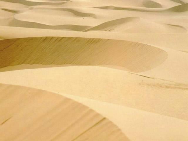 Redakce 21. STOLETÍ pro Vás připravila přehled největších pouští naší planety, řazený podle jejich rozlohy. Pevniny zaujímají jednu třetinu zemského povrchu, zbývající část pokrývají oceány. Z oné třetiny suché země zaujímají celou další třetinu pouště, nehostinná místa nacházející se nejčastěji v rovníkových oblastech naší planety. Na poušti také najdeme nejteplejší místo Země. Je to El Azízia v Libyi, kde naměřili 13. září 1922 neuvěřitelných 57,8 °C ve stínu.