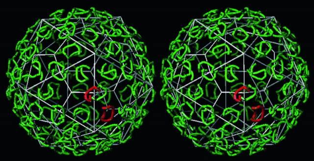 Ve vědeckých laboratořích dnes oživují dávno mrtvé viry a vznikají i první nové formy života. Cílem všeho snažení je vyrobit uměle DNA či RNA, tedy samostatně reprodukovatelný živý organismus
