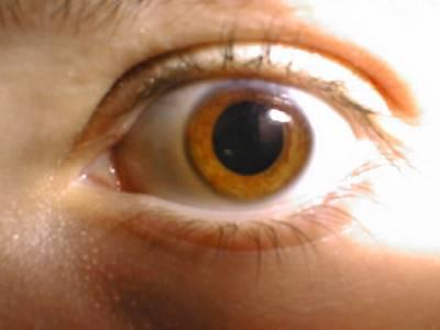 Při každém mrknutí oka se nám dočasně deaktivuje část mozku! Zjistili to nyní britští vědci z londýnské University College.