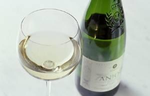 Zapřísáhlí abstinenti by měli své názory přehodnotit. Studie českých vědců ukazuje, že pití vína v rozumné míře podstatně snižuje riziko kornatění tepen a dalších chorob.
