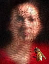 Zdají se vám všechny včely stejné? Je zvláštní, že tvorovi, který v porovnání s člověkem disponuje pouhou setinou procenta množství neuronů, nedělá potíže zapamatovat si naši tvář.
