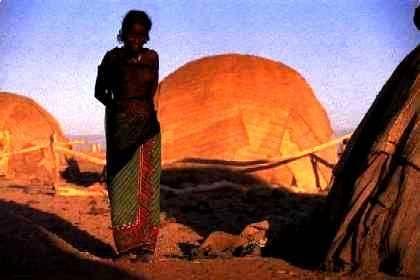 V Etiopské  afarské poušti se po zemětřesení vytvořila čtyři metry široká a 60 kilometrů dlouhá puklina. Podle vědců je první fází oddělování země od afrického kontinentu.