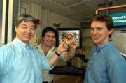 Američané objevili kapalinu, která při kontaktu s krví vytváří nepropustnou nanostrukturní síť.