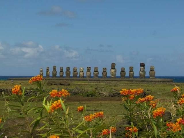 Zdejší domorodci své domovině na osamělém Velikonočním ostrově uprostřed Tichého oceánu říkají Rapa Nui – Velká země. Už 20 let tady uctívají Čecha Pavla Pavla, protože rozluštil jednu z jejich největších záhad.