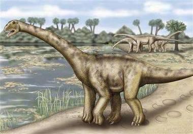 Ve Španělsku byly nalezeny zkamenělé kosti nového druhu býložravých dinosaurů
