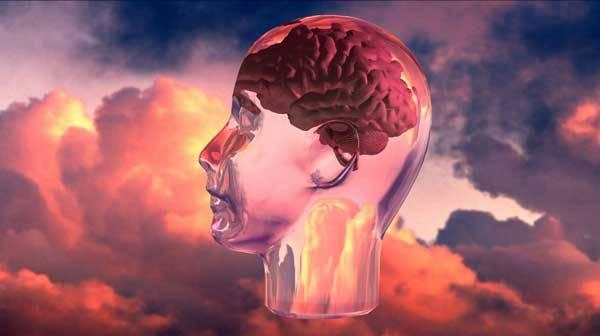 """Nový princip detektoru lži pracuje s takzvaným  """"otiskem mozku"""", kdy si mozek pachatele zločinu jakoby řekne: """"Aha! Tak tohle znám!"""". Je však tato metoda přesná? Nedá se přístroj oklamat?"""