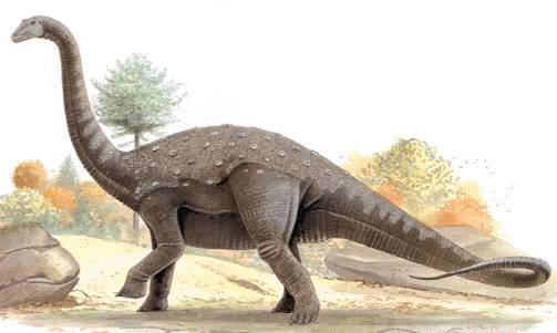 Australští paleontologové oznámili, že odkryli zkamenělé kosti dvou obřích titanosaurů.