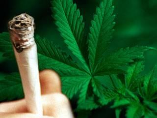 Průzkum složitých vztahů mezi neurony, buňkami, které tvoří náš nervový systém, přináší vědcům řadu překvapení prakticky každodenně. Nedávná společná studie amerických a brazilských vědců ukázala, že naše mozky si samy vyrábějí látky, jejichž účinky se blíží účinkům marihuany.