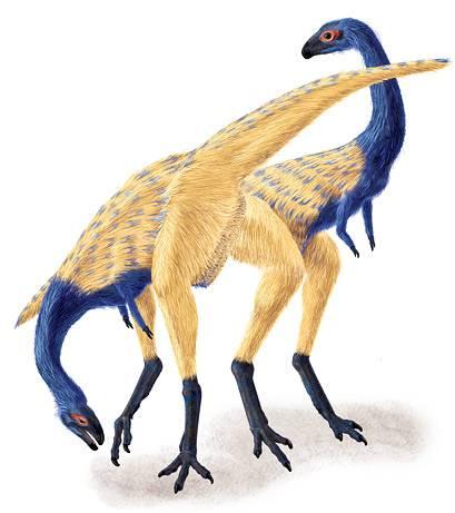 O tom, že ptáci jsou přímými potomky dinosaurů, dnes prakticky nepochybuje žádný z vědců. Tento pohled potvrzují jak důkazy genetiků, tak paleontologické nálezy. Dinosaurus nedávno nalezený v Číně napovídá vědcům, jak se vyvinulo ptačí křídlo.