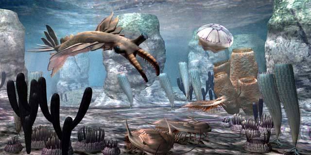 Stačí se podívat na obrázek rekonstrukce podivného anomalokarise z moří prvohorního kambria, a máme jasno. Musel patřit k největším postrachům tehdejších moří. Od roku 1892, kdy byl první exemplář této skupiny objeven v kanadských horách, se paleontologové hádají, ke které ze skupin živočichů jej vlastně přiřadit. Naší jistotě však přidal nedávný objev z Německa.