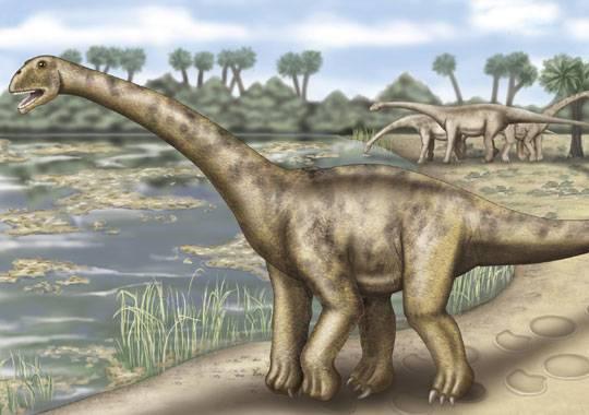 Rájem jak pro profesionální paleontology, tak pro amatérské milovníky dinosaurů jsou především Spojené státy, Mongolsko nebo Čína. Nedávný nález obřích dinosauřích stop ve Francii však potvrdil, že významné lokality pro výzkum druhohorních plazů lze nalézt i ve staré dobré Evropě.