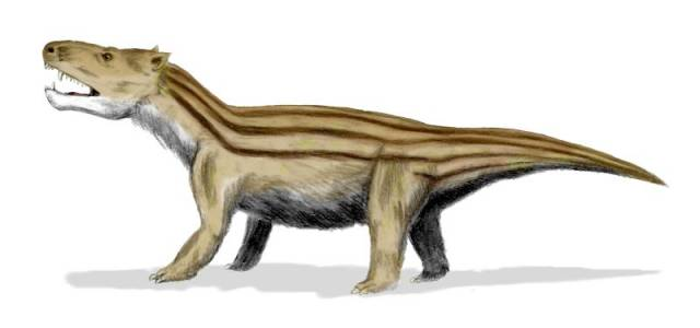 Katastrofa na konci křídy způsobená pravděpodobně srážkou Země s meteoritem se stala osudnou pro drtivou většinu obrovitých forem plazů, zejména pro populární dinosaury. Menší zvířata, kterými byli v té době například savci,  však snáze přežila. Netrvalo ani tak dlouho a z jejich potomků se vyvinuly druhy, které si svou velikostí s největšími dinosaury nijak nezadaly. Proč ale v evoluční ruletě zvítězili právě oni?