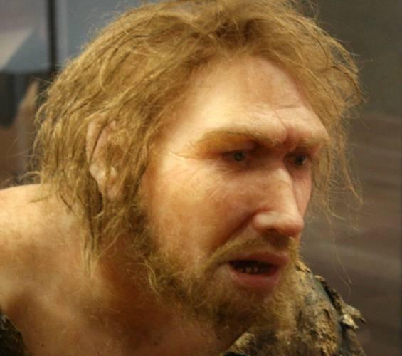 """Přezdívku """"neandertálec"""" si snadno vyslouží neohrabaný politik či hrubiánský fotbalový fanoušek. Nedávné nálezy z jižního Španělska však ukazují, že neandertálci měli mnohem jemnější duši, než by si laik myslel. Vědci zde nalezli zbytky po pradávných """"šminkách""""."""