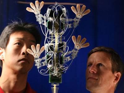 Takzvaná biomimetika, neboli napodobování přírody lidskou rukou, je jedním z nejprogresivněji se rozvíjejících oborů. Inženýři z amerického Stanfordu se nedávno inspirovali nohami ještěrek gekonů a postavili podle nich robota, který umí šplhat po i po skle.