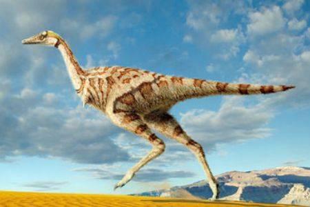 V provincii Vnitřní Mongolsko na severu Číny došlo nedávno k velmi zajímavému nálezu. Ve vrstvách ze svrchní křídy byla objevena fosílie dinosaura zhruba o velikosti většího papouška. Jeho největší zvláštností bylo, že měl na rozdíl od svých příbuzných pouze jeden prst.