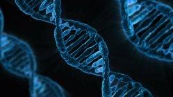 Američané provedli první pokus o změnu DNA v těle