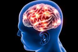 Brouk v hlavě? Parazit v mozku!