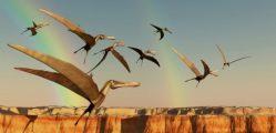 Nález pterosauřích vajec v Číně