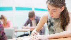 Holandský výzkum: Jaký je ideální věk ke studiu?