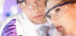 Jako jeden národ: Čeští a slovenští vědci upevní vzájemnou spolupráci