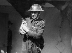 Britská válečná hysterie stála život statisíce zvířat