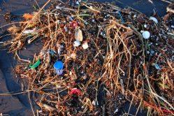 Plastový odpad znečistil už i Mariánský příkop