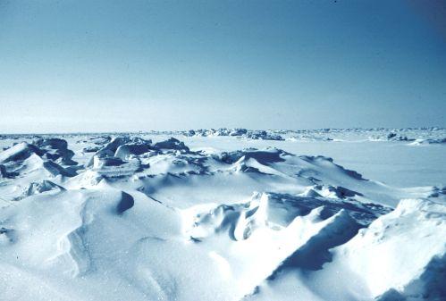 Arktida zažila druhý nejteplejší rok v historii měření
