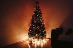 Jak naložit s nepotřebným vánočním stromečkem?
