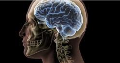 Vědci odhalili dosud neznámou činnost lidského vědomí