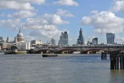 V londýnské Temži plavou zdrogované ryby. Voda je plná kokainu…
