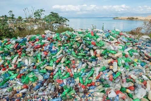 Každý člověk sní za týden v průměru 5 gramů plastu