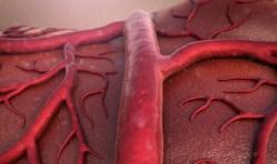 Měření odhalí riziko mozkové mrtvice nebo srdečního infarktu