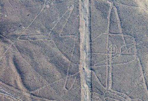 Na planině Nazca v Peru byly nalezeny další obrazce